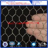 六角形の金網PVCおよび電流を通される