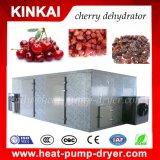 Nombres de toda la máquina seca del secador de las frutas del deshidratador de la fábrica de Kinkai