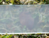 Helado/ácido grabó al agua fuerte el vidrio Tempered/endurecido