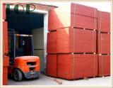 1220*2440 (4*8) de Populier van 9/12/15/18mm/het Mariene Triplex van de Lijm van de Kern WBP van het Hardhout voor Bouw