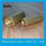 Aetv Marken-automatisches Messingrückschlagventil