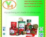 Alta qualidade enlatada molho 580g da pasta de tomate do tomate do baixo preço