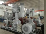 Compresor de aire de alta presión/compresor de aire sin aceite/compresor de pistón