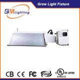 طاقة - توفير [315و] [كمه] ينمو الثّقل لأنّ [هدروبونيك] ضوء