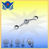 Xc-B3111 de Montage van de Spin van de Muur van het Glas van het Roestvrij staal van de Hardware van het Glas