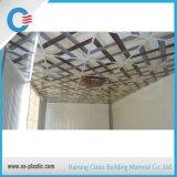 Projetos de carimbo quentes do painel de teto do PVC