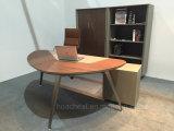 Biblioteca de couro de madeira do projeto contemporâneo (C28)