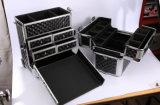 Schönheits-Salon-Zug-Rod-große Kapazitäts-Arbeitsweg-Kasten Multi-Functioncases mit expandierbaren Tellersegmenten