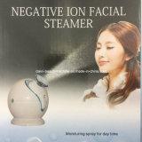 Reabastecimento de rosto quente e quente Revestimento de rosto para casa Saúde SPA Vapor facial para pele Cuidados de beleza ultra-sônica