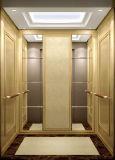 Самое лучшее цена 250kg к малому лифту селитебного здания 320kg