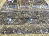 Donkere Verglaasde het Vloeren van de Kleur Porselein Tegel
