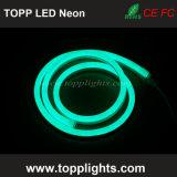 Type d'élément de lumière au néon et couleur verte émettant LED Lumière de néon