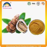 Polvere animale dell'estratto dell'ostrica dell'estratto
