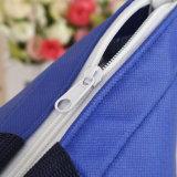 Facendo pubblicità personalizzare il sacchetto di ghiaccio termico & di raffreddamento stampato marchio, sacchetto più freddo