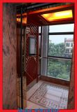 Concreto & eixo Contruction do tijolo para o elevador Home