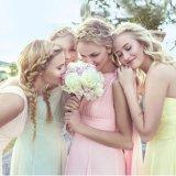 Bridesmaid Coral пинка сини платьев партии выпускного вечера шифоновый одевает Z5080