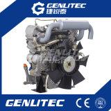 잔디 절단기 사용 2 실린더 19HP Changchai 디젤 엔진 EV80