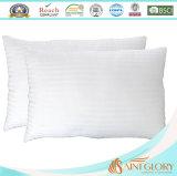 20 di X 26inch del cotone della ratiera del tessuto cuscino alternativo 100% giù