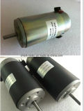 Motor de corrente contínua do torque elevado, 12V 24V 36V 48V