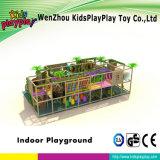 販売のための中国の製造の子供の屋内運動場の大きいスライド