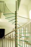 Il vetro laminato Tempered interno fa un passo spirale/scala curva