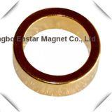 Magnete a magnete permanente sinterizzato del neodimio dell'anello