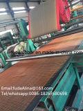 Preço de nylon resistente da correia transportadora (NN) do rasgo amplamente utilizado padrão do RUÍDO