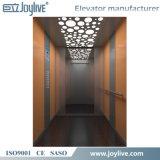 De Lift van de passagier met de Decoratie van de Spiegel en Controle Vvf