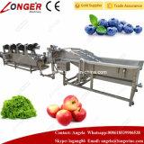 Lavage de fruits et légumes et machine de séchage en vente