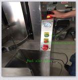 Машина шелушения ананаса утверждения Ce Fxp-66
