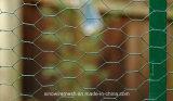 Sailin a galvanisé la compensation de fil de PVC pour la frontière de sécurité de jardin