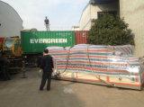 リチウム電池の工場のための省エネのタイプ低い露点の産業除湿器