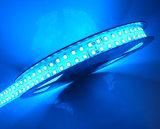 IP67 impermeabilizzano l'indicatore luminoso di striscia dell'indicatore luminoso 3528 240LED/M LED della corda del lato del doppio del tubo del silicone