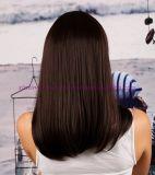 형식 긴 작풍 강타를 가진 합성 머리 가발
