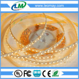 UL 증명서를 가진 LED 명부 3528SMD 24VDC LED 지구 빛