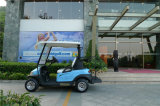 Корабль самого лучшего автомобиля клуба качества электрический от Китая