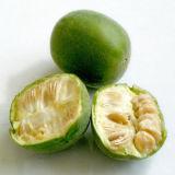 Edulcorante natural do extrato da fruta da monge de 50% Mogroside V