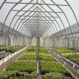 Invernadero de la Plástico-Película de la alta calidad hecho en China