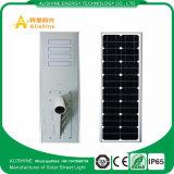 réverbère solaire de jardin de 80W 8000lm DEL avec la batterie LiFePO4