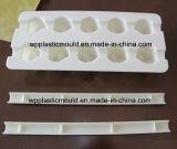 De concrete Plastic Vormen van het Blok van Verbindingsstukken voor de Bouw van de Spoorweg (dzdk10-YL)