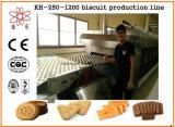 KH-voller automatischer Biskuit-Produktionszweig Maschine