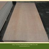 Placa vermelha da madeira compensada da folhosa da classe quente da venda BB/CC (2.5mm, 2.6mm, 5.0mm)