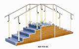Escadas em dois sentidos do treinamento da reabilitação