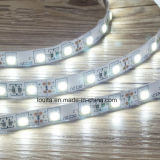 Blanco cálido SMD 5050 60LEDs / M LED Strip