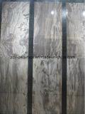 Китайская Плитка-Yinuo мрамора тела оригинала 800*800mm полная
