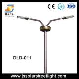 De Dubbele Lampen van de LEIDENE Verkoop van Straatlantaarns met Goede Kwaliteit