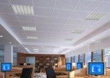 실내 천장 점화를 위한 30*60cm 18W 3D LED 위원회 빛