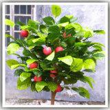 Искусственная яблоня