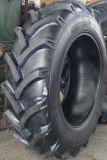 Gute Aushärtung und Muster-Traktor der Verschleißfestigkeit-R-1 ermüden 14.9-30