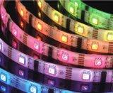 LED 2 철사 편평한 모양 LED 밧줄 빛